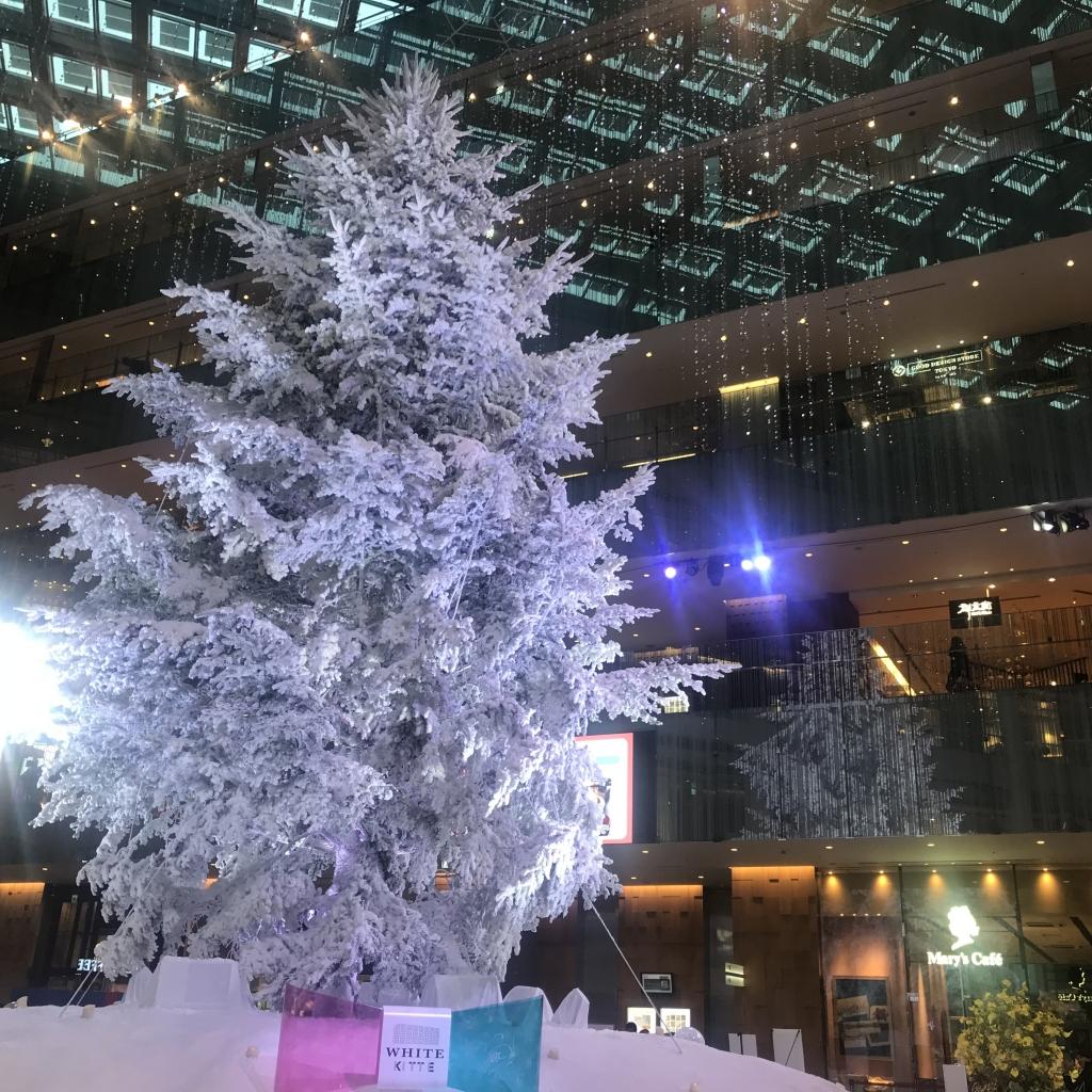 イルミネーション in 東京駅 【 松本 】